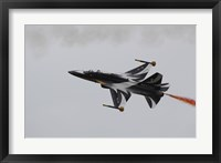 Framed T-50 Golden Eagle from the Republic of Korea Air Force Aerobatic Team