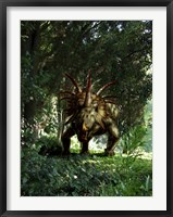 Framed Styracosaurus in a forest