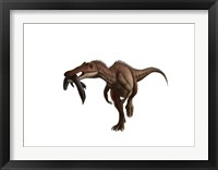 Framed Baryonyx dinosaur with a fish in mouth, white background