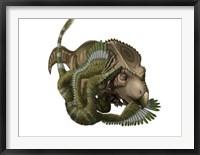 Framed Velociraptor attacks a Protoceratops