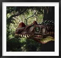Framed Ceratosaurus magnicornis of the Late Jurassic Period