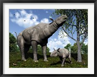 Framed Paraceratherium mother grazes on leaves and twigs of a poplar tree