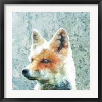 Framed Abstract Fox