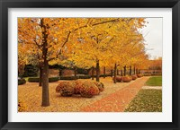Framed Fall Walkway