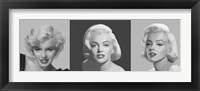 Framed Marilyn Trio