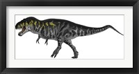 Framed Tyrannosaurus Rex, a Large Predator of the Cretaceous Period