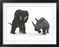 Framed Adult Nedoceratops Compared to a Modern Adult White Rhinoceros