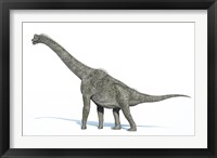 Framed 3D Rendering of a Brachiosaurus Dinosaur
