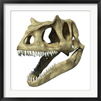 Framed 3D Rendering of an Allosaurus Skull