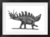 Framed Pencil Drawing of Chungkingosaurus Jiangbeiensis