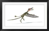 Framed Dorygnathus Dinosaur