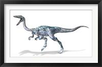 Framed 3D Rendering of a Coelophysis Rinosaur