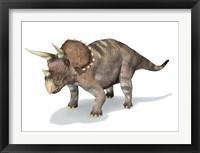 Framed 3D Rendering of a Triceratops Dinosaur
