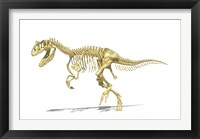 Framed 3D Rendering of an Allosaurus Dinosaur Skeleton