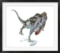 Framed Majungasaurus Dinosaur on White Background