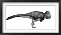 Framed Black Ink Drawing of Tyrannosaurus Rex