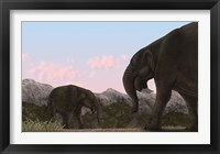 Framed Two Deinotherium, an Extinct Animal of the Miocene Epoch