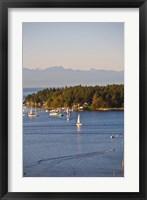 Framed Nanaimo, Vancouver Island, British Columbia, Canada