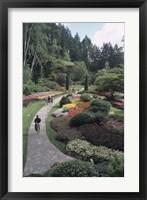 Framed Sunken Garden at Butchart Gardens, Vancouver Island, British Columbia, Canada