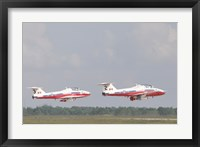 Framed Snowbirds 431