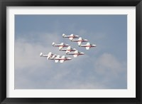 Framed Snowbirds 431 Air Demonstration Squadron of the Royal Canadian Air Force