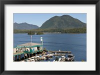 Framed Harbor, Meares Island, Vancouver Island, British Columbia
