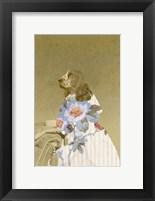 Framed Constance