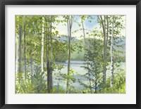 Summer Lake IV Framed Print