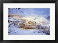 Framed Mammoth Hot Springs - Yellowstone