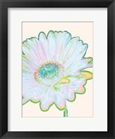 Framed Pop Daisy