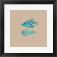 Clam Shells on Sand Framed Print