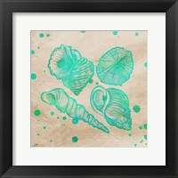 Splat Shells on Sand I Framed Print