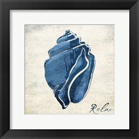 Inspirational Blue Shell II Framed Print
