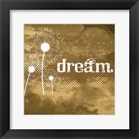 Framed Sand Dollar Dream