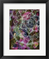 Radiant Lotus Framed Print