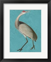 Tall Bird 2 Framed Print