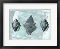 Ocean Beauty 2 Framed Print