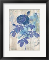 My Blue Rose Framed Print