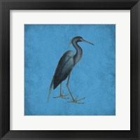 Natural Balance Framed Print