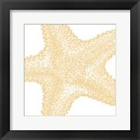 Nautical Star Framed Print