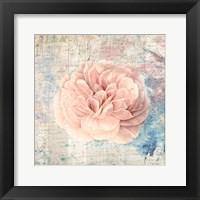 Vintage Pink Romance Framed Print