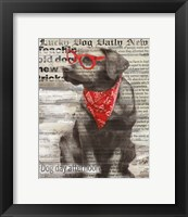 Lucky Dog Framed Print