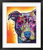 Framed Heart U Pit Bull