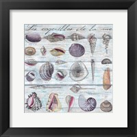Framed Les Coquilles Pattern Wood