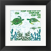 Framed Turtles