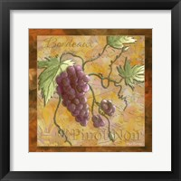 Wine 11 Framed Print