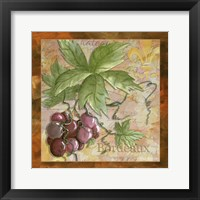 Wine 12 Framed Print