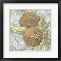 Buon Appetito Tomatoes Framed Print
