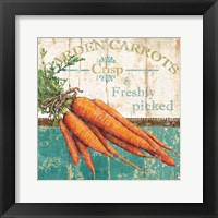 Framed Garden Carrots