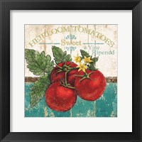 Framed Heirloom Tomatoes